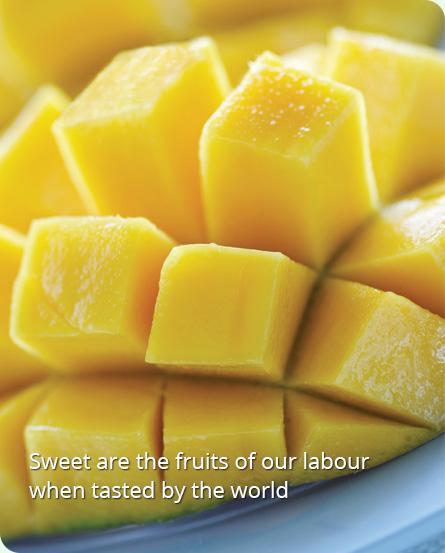 Food Processing Company | IQF Fruits | Vegetables